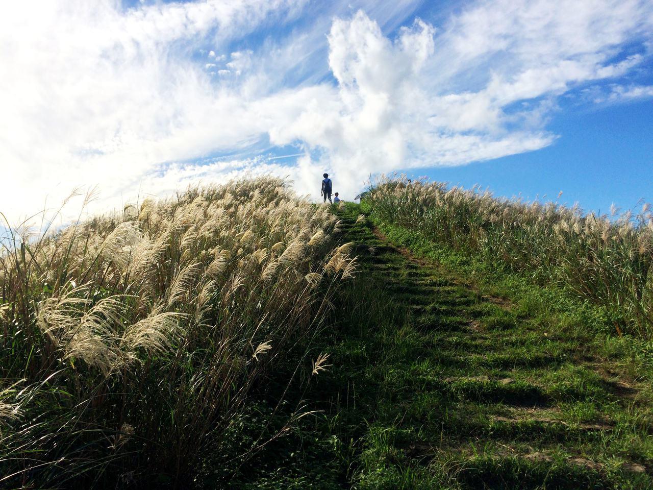 秋登南子吝步道,海天一色美不勝收,山頂有整片芒花(圖)。 圖/王迦嵐