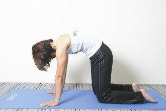 b.脊椎由下往上一節一節慢慢拱起,停住伸展,頭頂與尾椎要朝兩個方向延伸,收腹,回...