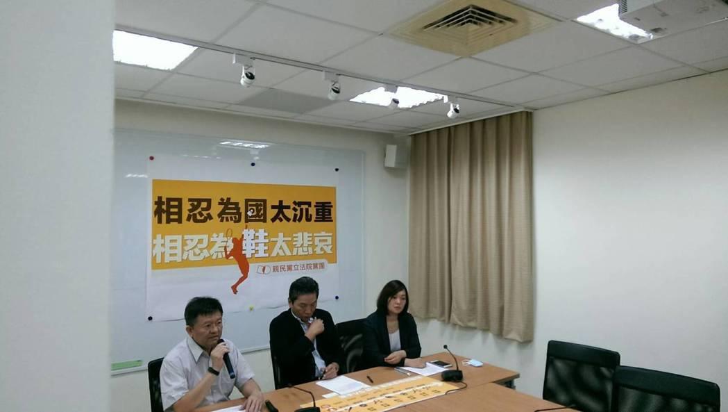 親民黨團認為,體育的改革勢在必行。記者徐偉真/攝影