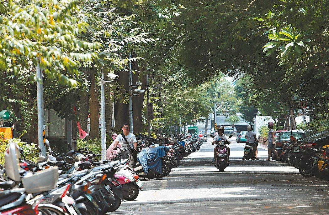 台北市松山區健康路325巷25弄街道寬闊、綠樹很多。 記者林俊良/攝影