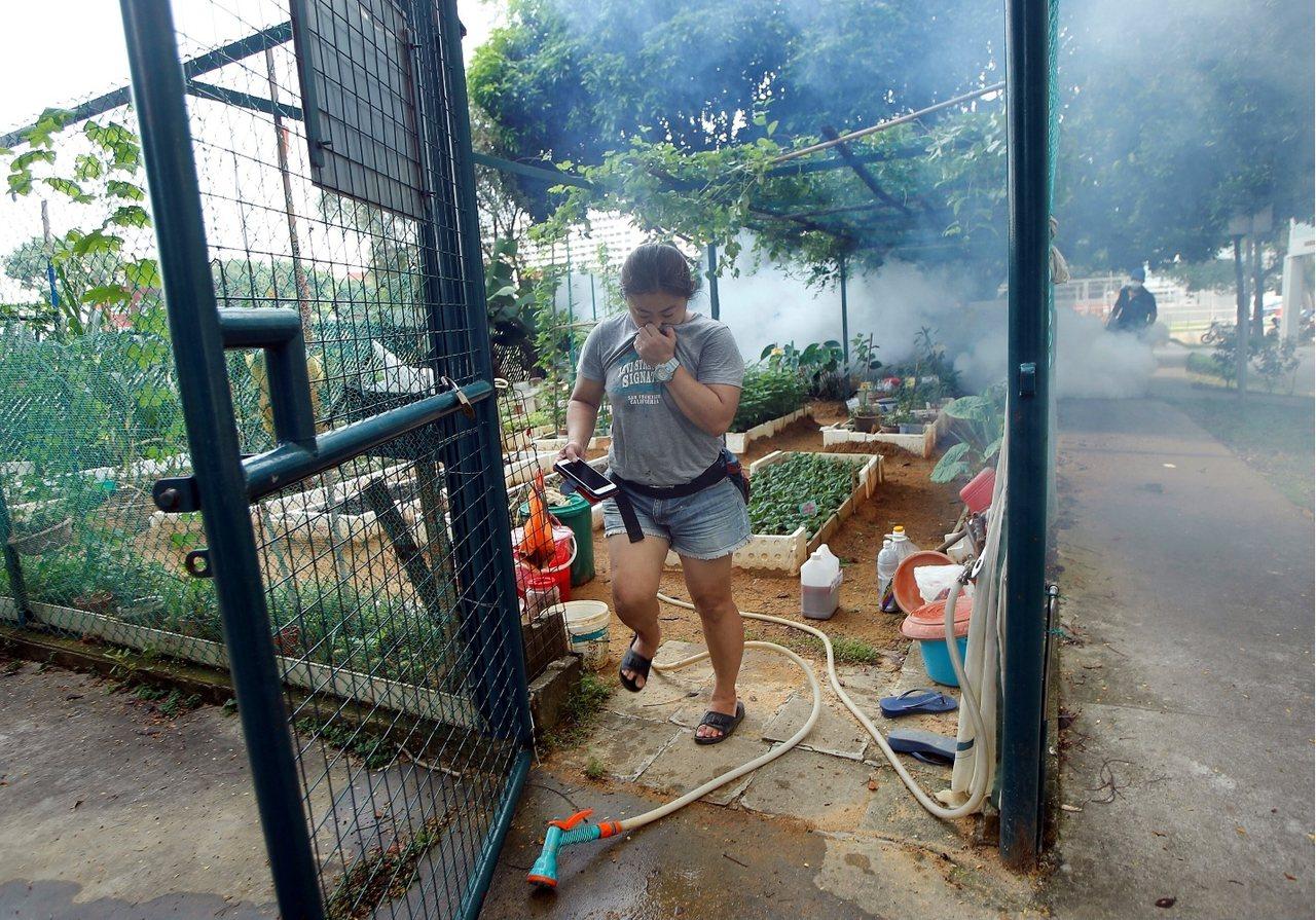 新加坡长久以来都是登革热好发地,此次暴发兹卡疫情,大家赶忙在自家住宅区消毒。 图...