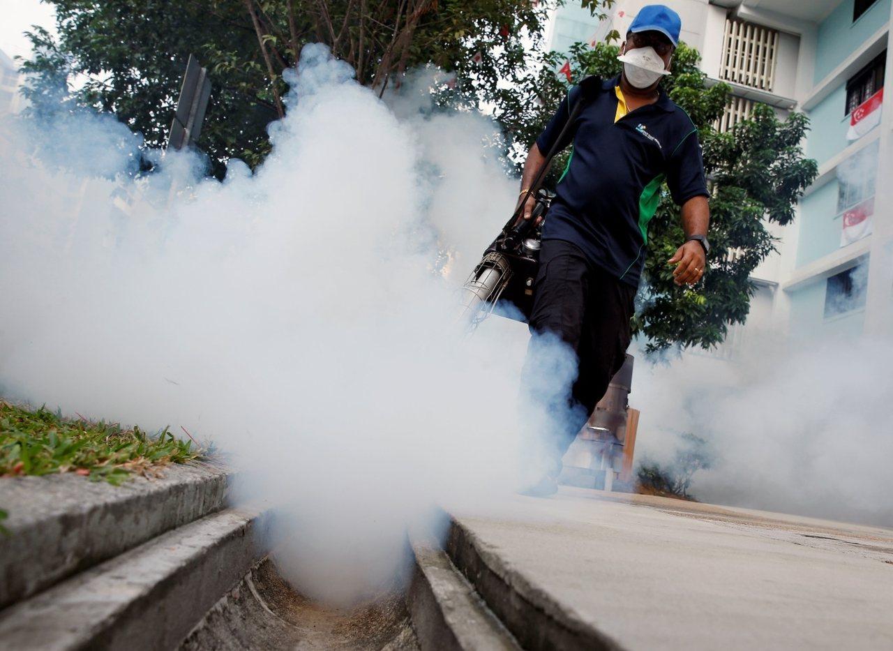 新加坡今年暑假爆发兹卡疫情,病例数量攀升。 图/路透社