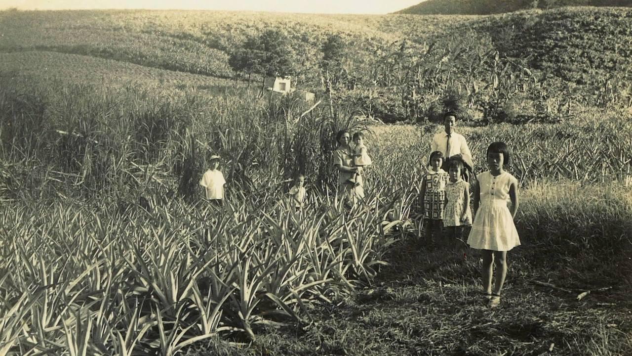 透過八重山的台灣人的故事,我們認識這段歷史,而後,理解彼此。 圖/記錄片《<a ...