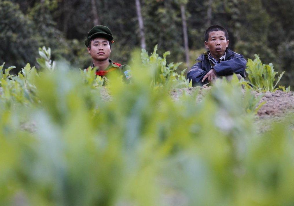 政策失焦讓緬甸緝毒工程徒具形式,只把問題從山頭趕到山頭。圖左為德昂邦解放軍(TN...