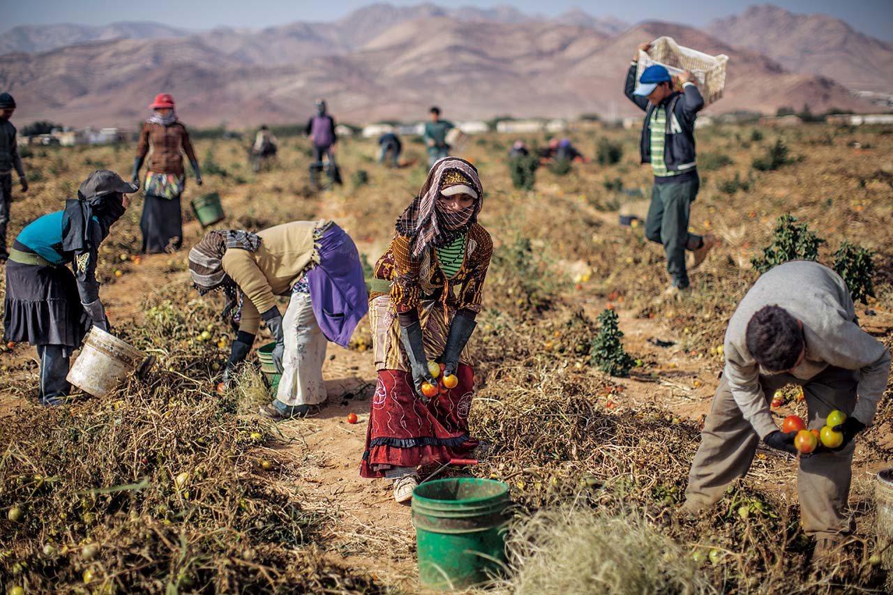 约旦,2013年逃离内战 #2011年战事爆发后,逃离叙利亚家乡的难民辗转来到...
