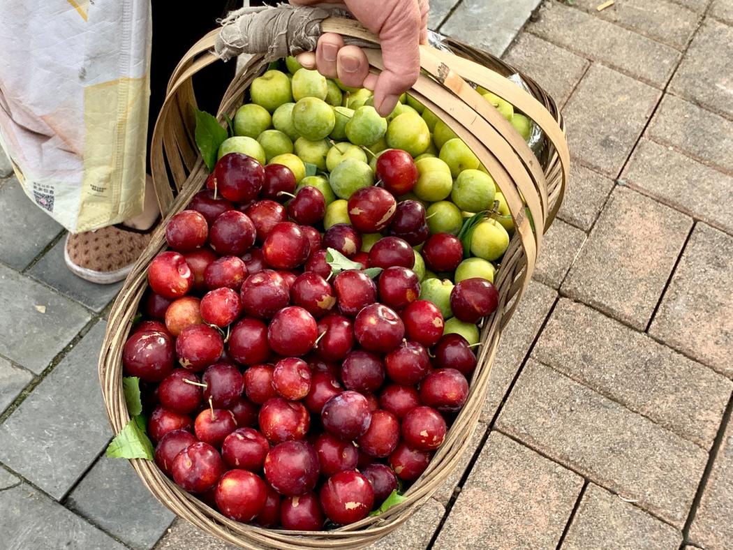 成熟可吃的李子,夏天的七月,正值成熟期,树上自然熟成的,重庆到处都见有妇女提折篮子来卖