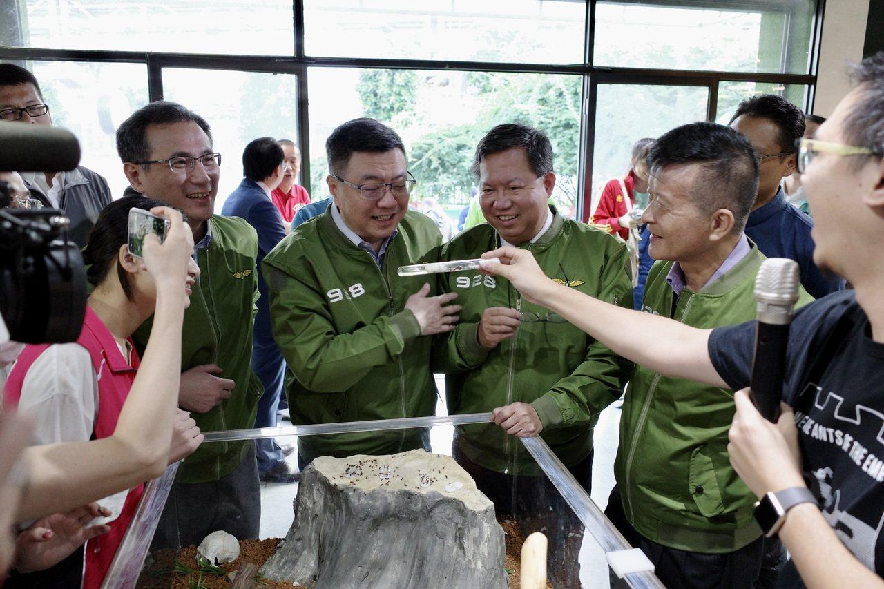 卓荣泰(左2)看见体型最大的蚁后,开玩笑说「这就是郑文灿啦」。记者曾健佑/摄影