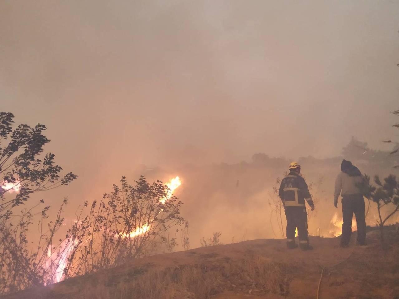 国道三号台中龙井段前天发生山林火警,除了有人后来在南寮步道一处壕沟内发现鹿的尸体...