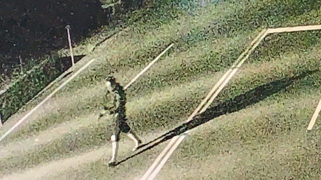 曾姓男子在火警后跑出台3线省道的画面。记者吴淑玲/翻摄