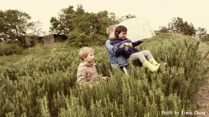 2017 張雍中歐私房.人文攝影探索旅程(斯洛維尼亞+克羅埃西亞 亞得里亞海10日)