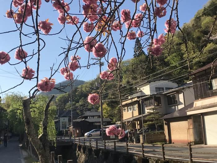 城崎溫泉天空之城.大阪阿倍野散策之旅 (第一梯)