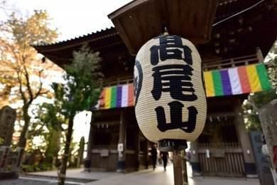 東京山梨。米其林美饌慢遊 (第二梯)