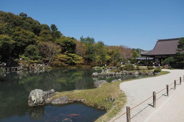 京都嵐山花燈路冬日溫泉慢遊