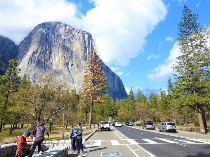 【舊金山生態慢活遊】優勝美地◆巨杉◆加州國王谷 三大國家公園慢活之旅