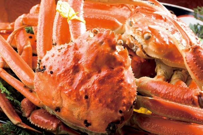 舌尖上的蟹逅。日本地域限定美食之旅(好評加開第二梯)