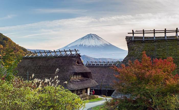 【季節限定】東京山梨八岳秘境麝香葡萄星野度假村