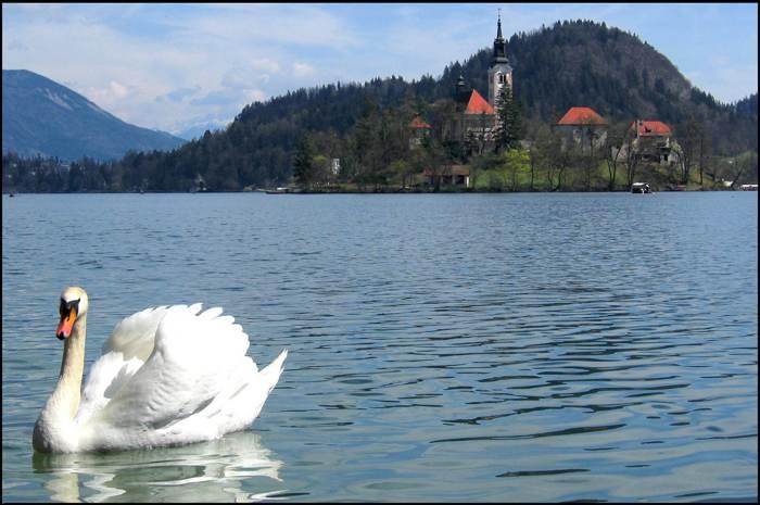 張雍中歐慢遊.私房攝影(斯洛維尼亞+克羅埃西亞 亞得里亞海人文慢遊10日)