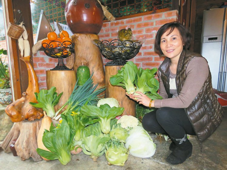 民宿家庭菜園 現採鮮味自己種
