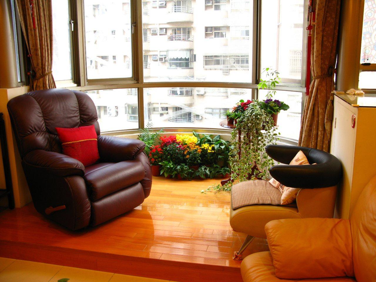 若要客廳家人聚集多,要降低室內二氧化碳濃度,建議可放置袖珍椰子、心葉蔓綠絨、非洲...