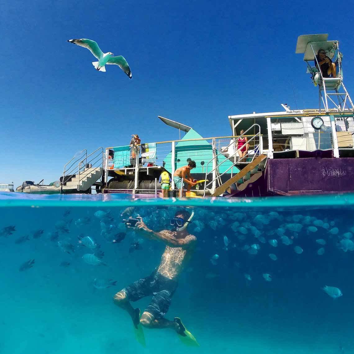 世界最佳旅地!澳洲「大堡礁」狠壓25國 奪得冠軍 | 旅遊 | 聯合新聞網