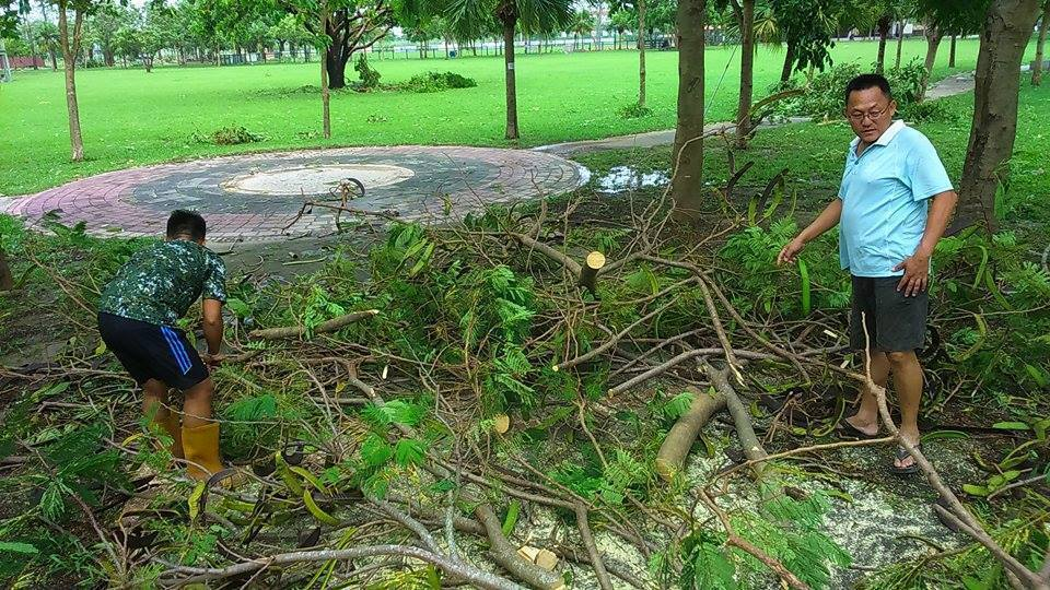 志工主動維護清除颱風後枝葉。照片謝昌任提供