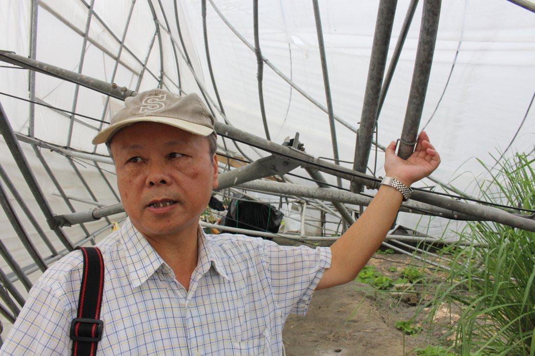 梅姬颱風造成雲林縣溫網室倒塌嚴重,農試所人員今天實際勘查,要揪出倒塌原因。記者姜...