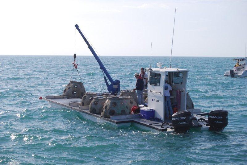 骨灰和水泥製作的人造礁。(取自永恆礁公司網站)