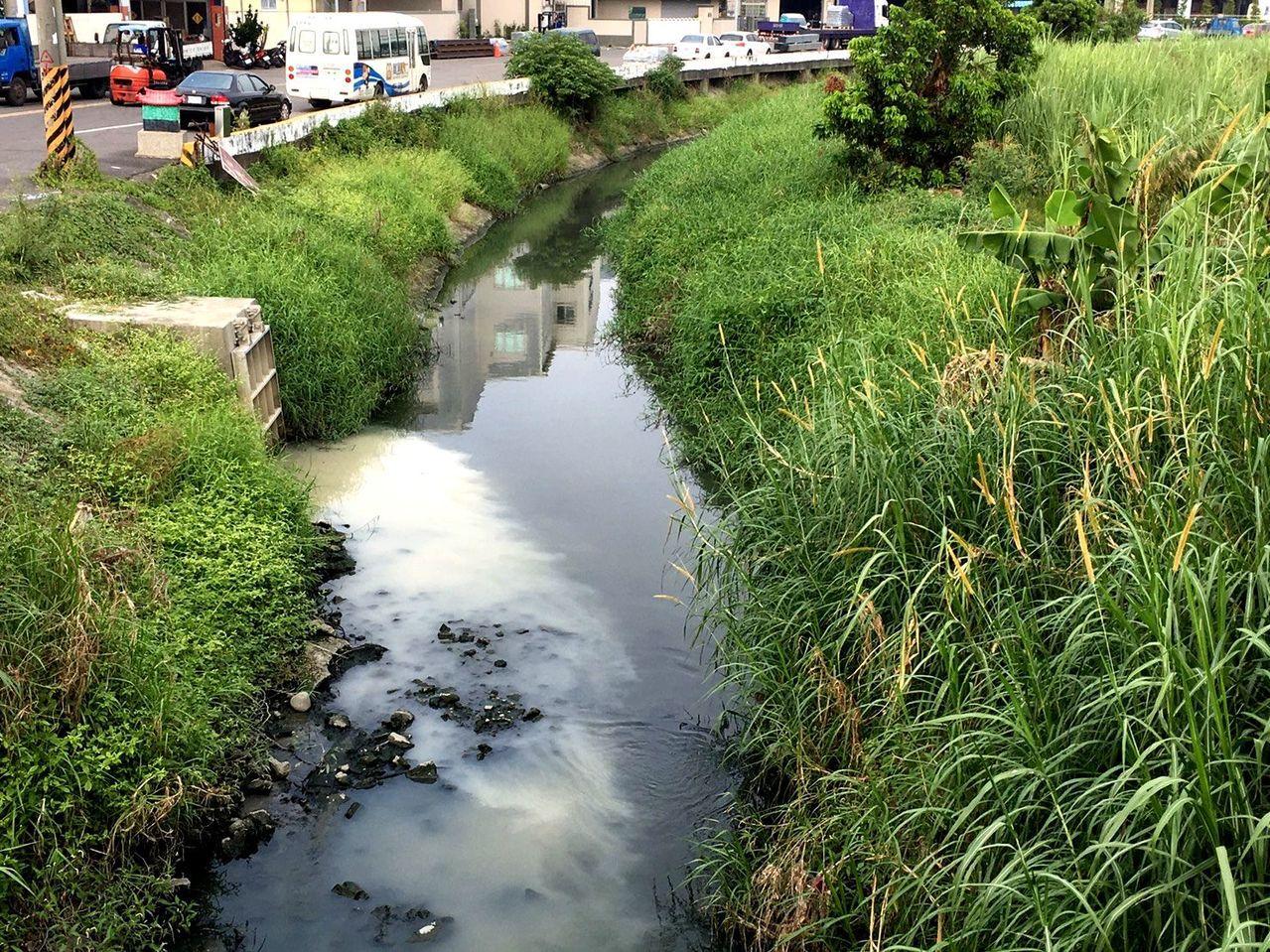 安南區總頭寮工業區業者排放混濁汙水,汙染嘉南大圳水質。圖/環保志工提供