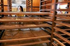 新竹峨眉老茶廠 重現被遺忘的製茶史