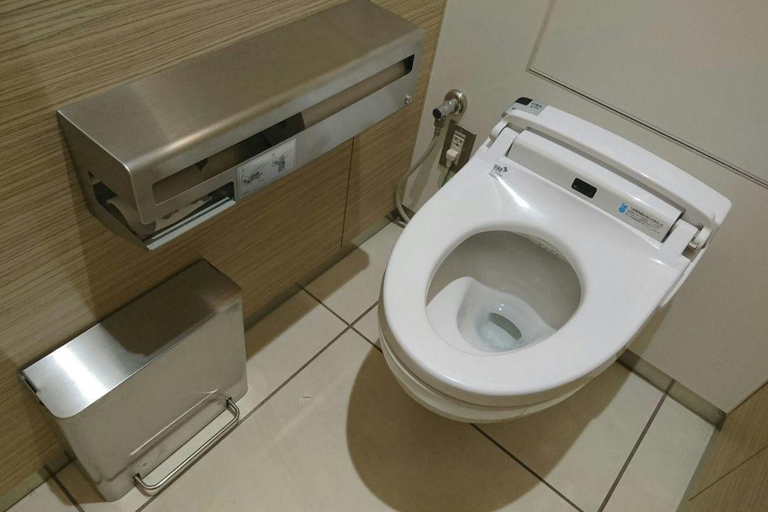 翻轉公廁/天龍國較地鼠國乾淨 公廁存在城鄉差距