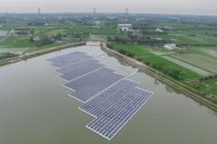 「做政績 自然生態回不來」環團:埤塘種電加速優養化