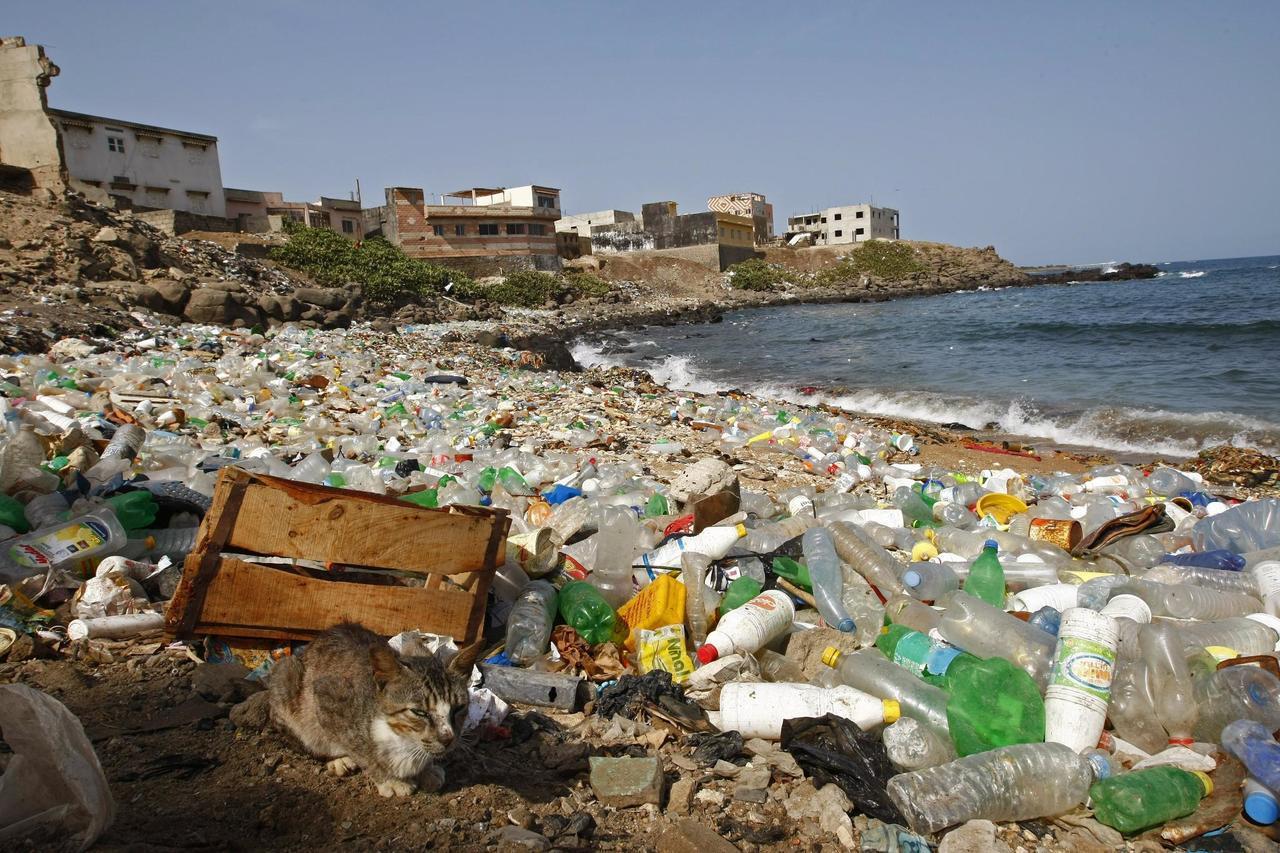 可怕汙染源!全球每分鐘賣出100萬個塑膠瓶