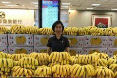 企業贈送0元蕉真能救香蕉? 年輕蕉農說「不」
