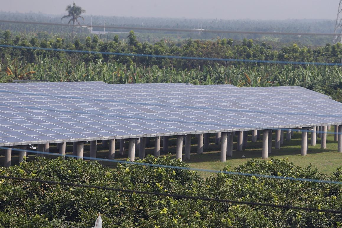 農地種電設限 農委會:架滿地力會死掉