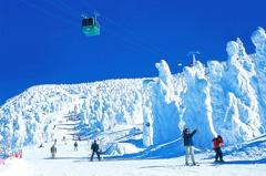 雪友穩定成長!日本5大區滑雪行程 2.5萬就能出發