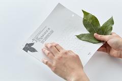 植物觸覺點字書 入圍金點概念設計獎