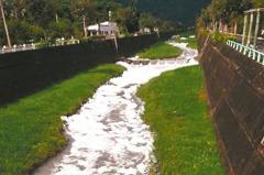 清潔劑惹禍 七腳川溪變泡泡溪