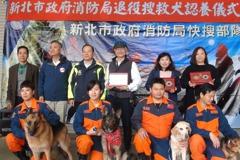 新北4退役搜救犬找到新家 認養人:怕牠小蠻腰不見