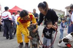 影/感念付出 高市消防局設立全台首座搜救犬追思碑