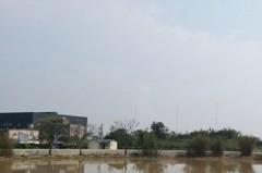觀音沿海「紅害」來襲 空氣品質偏差