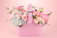 母親節送禮!迎接春暖花開季節 櫻花茶包櫻花餅乾