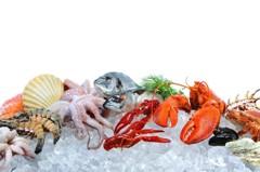 海鮮過敏埋危機 吃、嗅、觸都會引發
