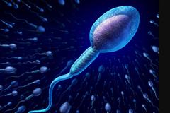 精子、精液一樣嗎?關於精子的7個冷知識