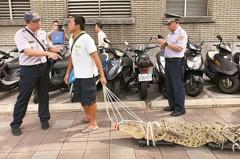 抗議動保法 養殖戶行政院前遛鱷魚