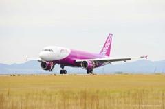 呼喚旅客重回大阪 樂桃航空辦機票促銷、照片投稿活動
