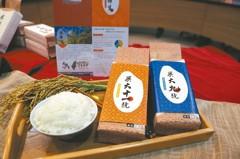 有利無毒種植 興大發表2品種水稻
