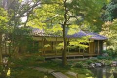 沏一壼舒服美學 謝小曼的京都散策