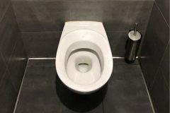 外國的馬桶專練深蹲用?鄉民泣:坐在自己手臂上廁所
