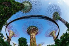 台旅客赴新加坡人數創新高!今年還有「2大新亮點」