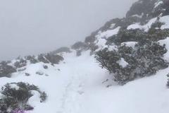 影/來看!雪山大降雪 銀白世界積雪逾半公尺